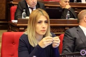 Элинар Варданян: «Борьба идет между оппозиционным и властным полюсами» (видео)
