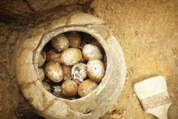 Չինական դամբարանում հնագետները 500 տարվա վաղեմության հավկիթներ են հայտնաբերել