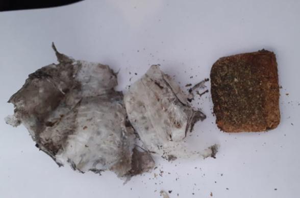 «Վանաձոր» և «Կոշ» քրեակատարողական հիմնարկներում հայտնաբերվել են թմրամիջոցի նմանվող զանգվածներ