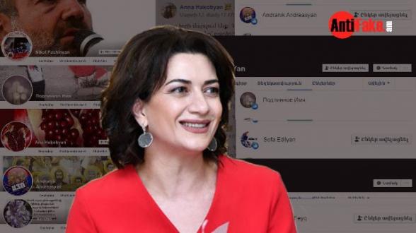 218 ֆեյքեր, որոնք ֆեյսբուքում աջակցում են Աննա Հակոբյանին (լուսանկար)