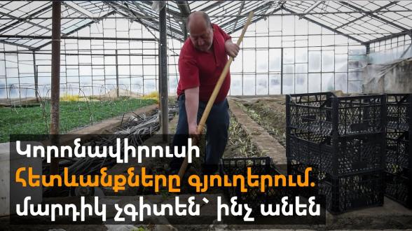 «Пусть Пашинян узнает, как тяжело нам живется»: коронавирус застал фермеров врасплох (видео)