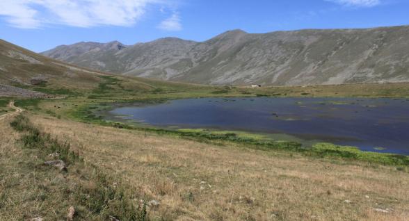 Азербайджанцы продвинулись в направлении села Акнер на 500 метров – староста