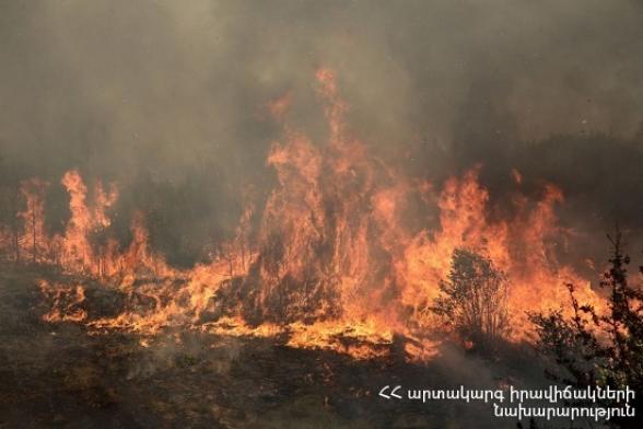 Զանգակատուն գյուղի սահմանամերձ տարածքում այրվել է 110 հա խոտածածկ տարածք