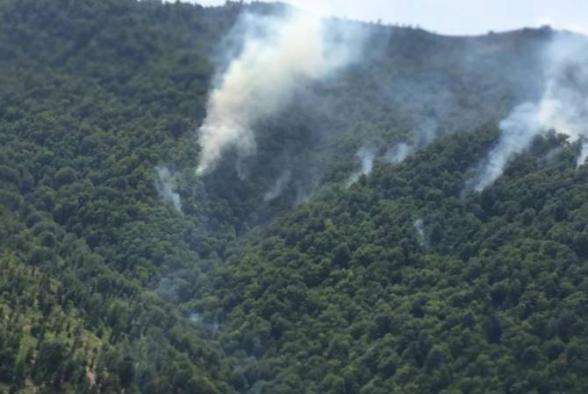 Ադրբեջանում վառվում են հարավային շրջանների անտառները (տեսանյութ)
